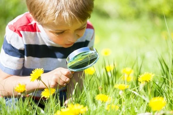 enfant explore la nature