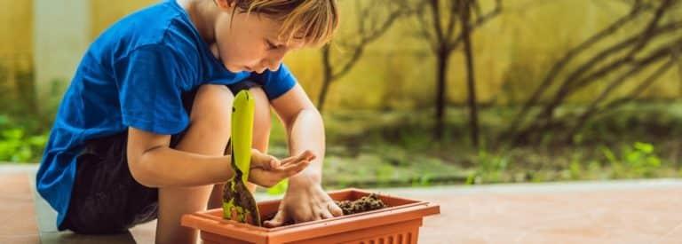 semis box jardinage enfant
